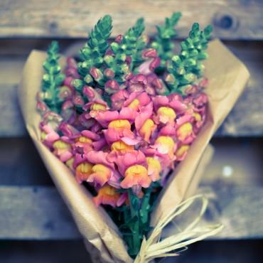Bouquet Bocche di Leone