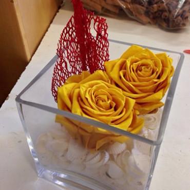 Composizione Rose Stabilizzate Cubo Shells
