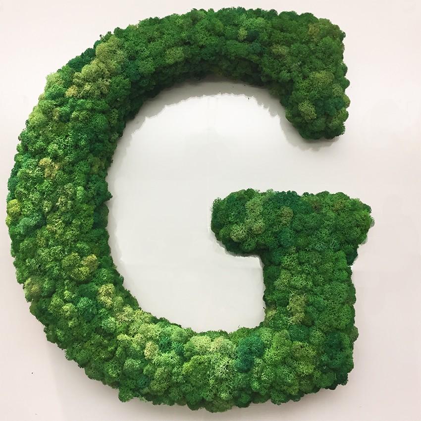 Lettere di lichene verde stabilizzato flority fair for Verde stabilizzato