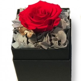 Flowerbox Rose stabilizzate