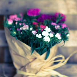 Bouquet Cinesini