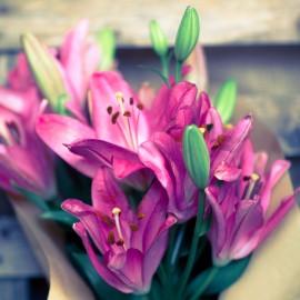Bouquet Lilium