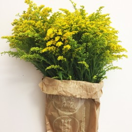 Bouquet Solidago
