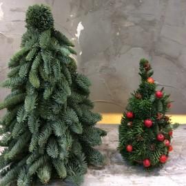 Composizione mini albero di natale