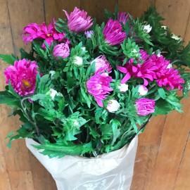 Bouquet Astrini