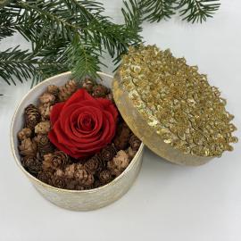 Composizione di rose stabilizzate in scatola dorata
