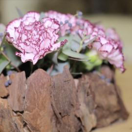 Corso online - Composizione a nido con corteccia e fiori di stagione