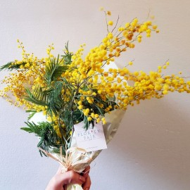 Bouquet Mimose
