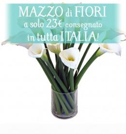 Bouquet di stagione 8€+