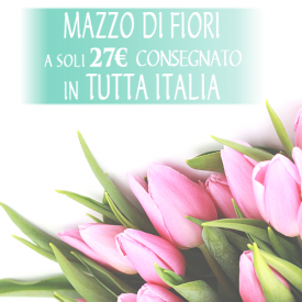 Bouquet di stagione 12€+