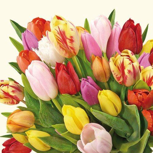 Bouquet di stagione