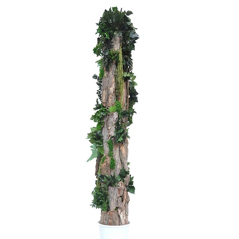 Totem forest